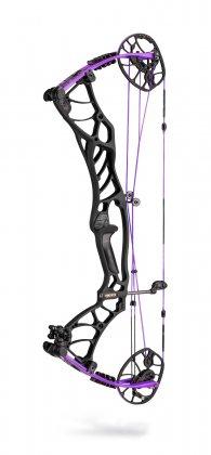 Black Out / Purple Limbs